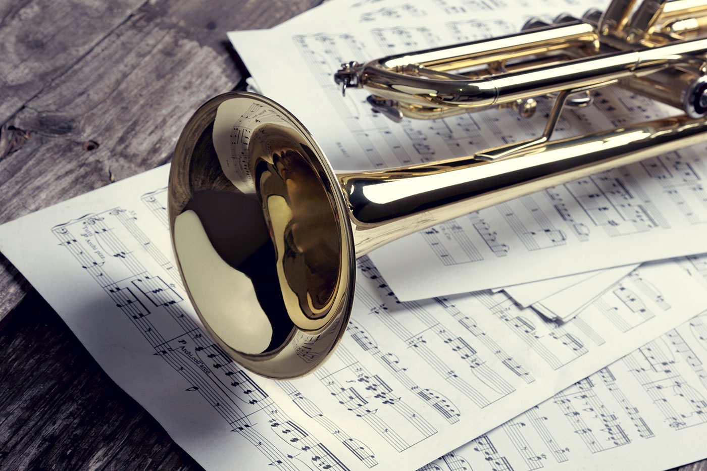 standard musicians union contract